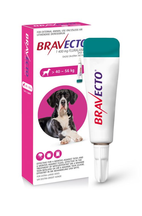 BRAVECTO Spot-On For Extra Large Dogs 40 – 56kg